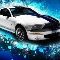 Araba Fotoğrafları (3)