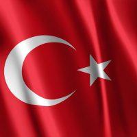 Türk Bayrağı (14)