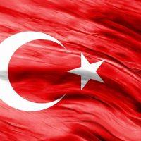Türk Bayrağı (15)