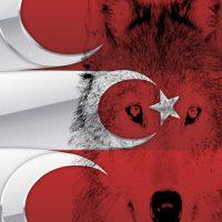 Türk Bayrağı (4)