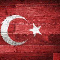 Türk Bayrağı (8)