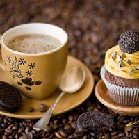 Yiyecek İçecek Gıda (25)