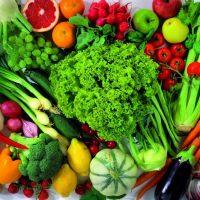 Yiyecek İçecek Gıda (3)