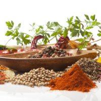 Yiyecek İçecek Gıda (36)